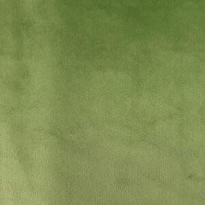 Verde | Velluto Tinta Unita